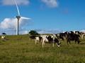 Hawi Windfarm