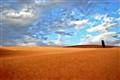 Desert Snake View