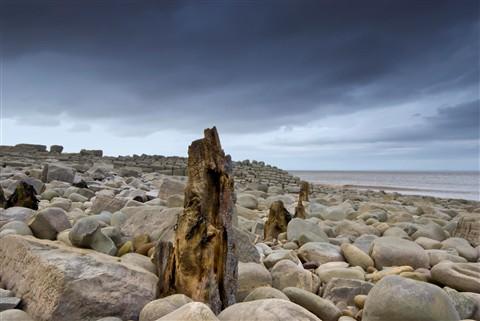 Wood Groyne