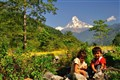 Under the umbrage of Mt. Machapuchare (Fish's tail)