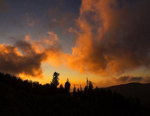 PerpetuaRidge_Sunset_SiuslawNFOR_S4XS_071213_reduced