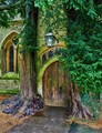 Porch door flanked by ancient Yew trees