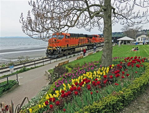 Empty coal train in White Rock BC