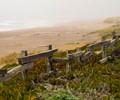 Rustic Fence Pacific Coast