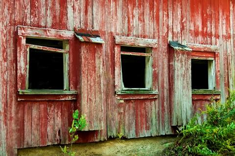 d_10072010_375  red (Custom)