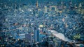 Tokyo as dusk arrives; the world's largest city stretches to the horizon and  the future