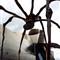 Guggenheim Spider