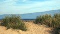 Walkers - Holkham Beach