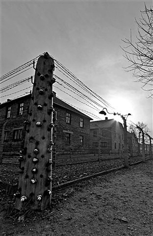 {Q}Auschwitz - bilborough
