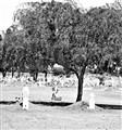 Salt River Pima Reservation Cemetery (AZ)