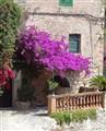 Mallorca style