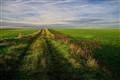 empty horizon