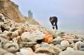 Looking for Shells in Netanya