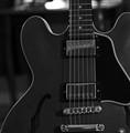 B-W Guitar
