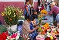 Street Market Flowers