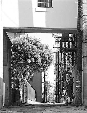 B&W Alley off Wilshire