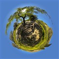 The Zeus Little Planet
