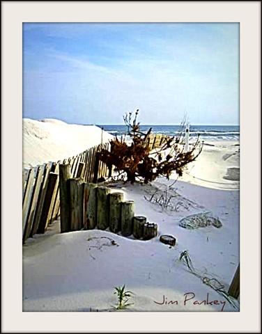 landscape beach after ivan