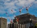Cranes At Rest, Tokyo, Japan