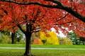 the season of color