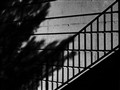 Shadowy Stairway