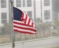 Flag and Fog