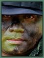 Park Rangers: Fighting crimes against the environment.