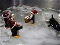 Penguins on a sink iceburg