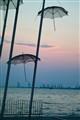 Umbrellas at sunset
