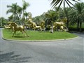 Golden Horses of Dubai