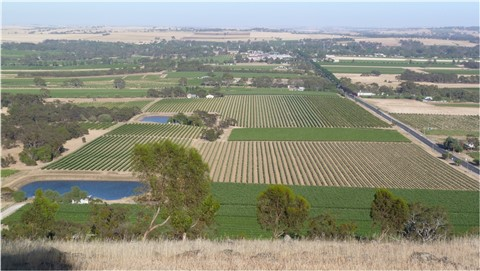 Barossa Valley Sth Australia