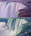 Niagara mix