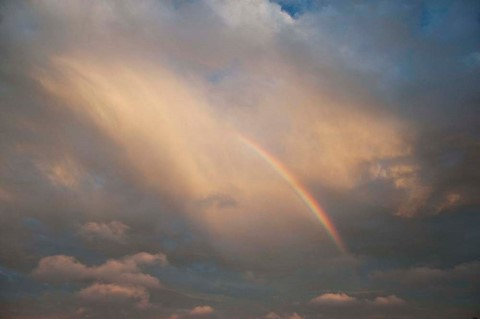 Rainbow_fragment