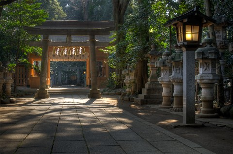 Suwa Jinja in the Early Morning, in Toyoshiki, Chiba Prefecture,