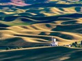Harvest Time in the Palouse