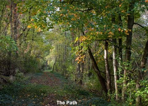 the path5x7A