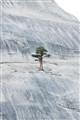 All alone in Yosemite