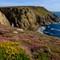 16_08_20_Cornwall-104