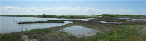 Marshes Near Rey's