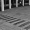 DSC_0933-Edit