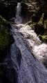 Gutach River