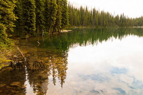 Lilian Lake Hike (792 of 800)