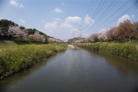 stream-DMW-GFC1-f8