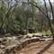 P4071151 - Reedy river falls park