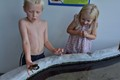 Oliver, Anna and the crab