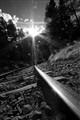 Alps rail