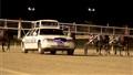Pony Pace Car