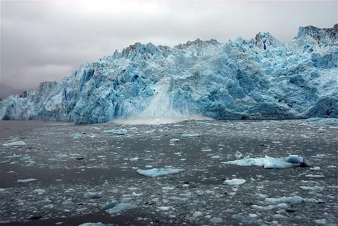 2006.06.25 hubbard glacier -164