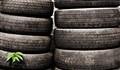 Tire Leaf