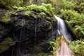water fall in mendo